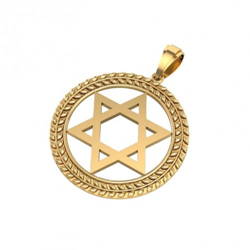 14K Gold Pendant, Star of David with Olive Leaf Design on Circular Frame