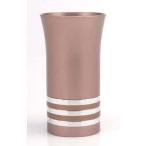 Pink Kiddush Cup with Silver Stripe- Agayof