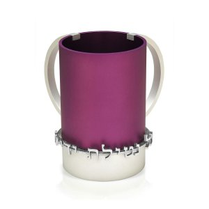 Purple Wash Cup - Benny Dabbah