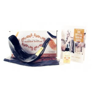 Complete Shofar Set Gift Box - Polished Black Ram's Horn