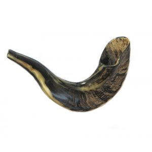 Small Shofar Rams Horn for Children - Dark Colors