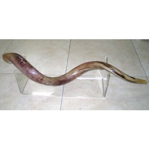 Extra Large Lucite Stand for Yemenite Shofars 40-52 Inches Long